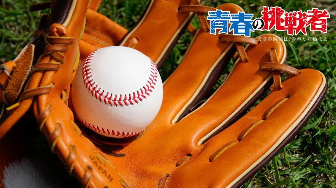 秋季近畿地区高等学校野球大会 2019